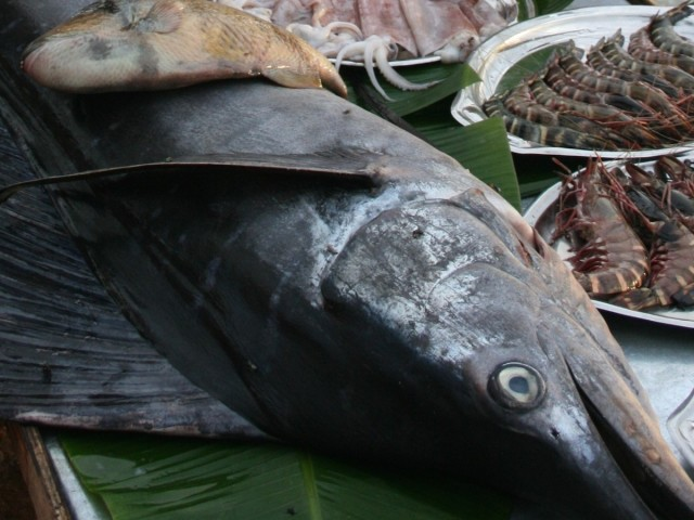 Świeże ryby na targu